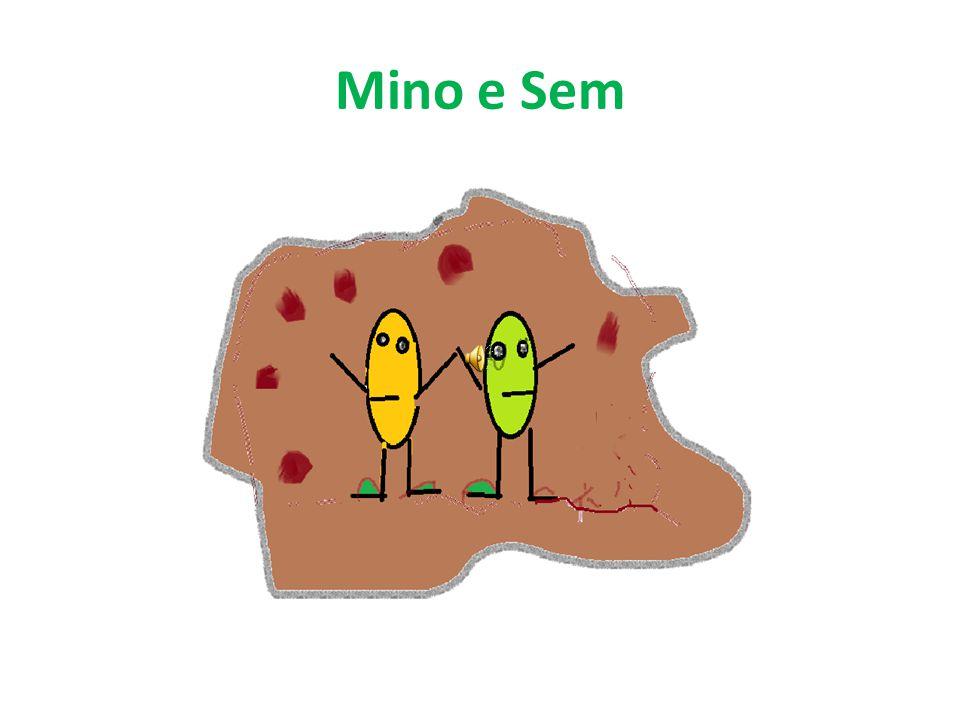 Mino e Sem