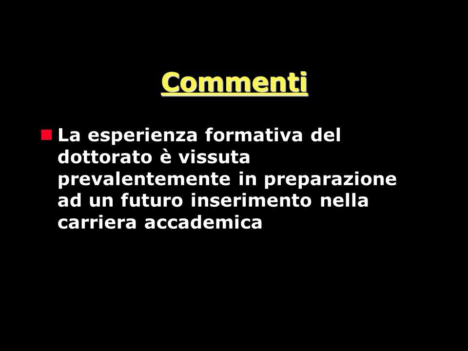 Commenti nLa esperienza formativa del dottorato è vissuta prevalentemente in preparazione ad un futuro inserimento nella carriera accademica