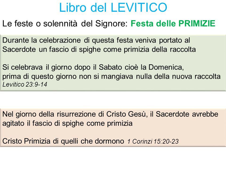 Libro del LEVITICO Durante la celebrazione di questa festa veniva portato al Sacerdote un fascio di spighe come primizia della raccolta Si celebrava i