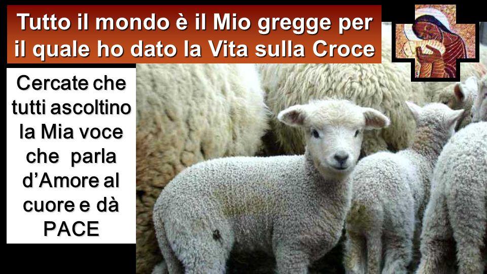 E ho altre pecore che non provengono da questo recinto: anche quelle io devo guidare. Ascolteranno la mia voce e diventeranno un solo gregge, un solo