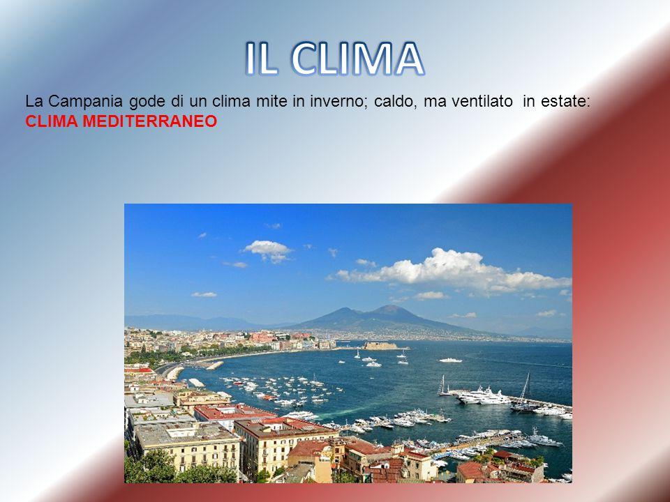 La Campania gode di un clima mite in inverno; caldo, ma ventilato in estate: CLIMA MEDITERRANEO