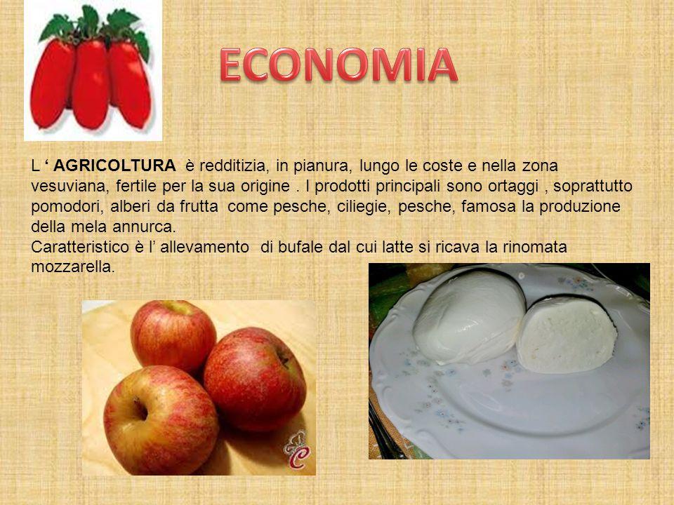 L ' AGRICOLTURA è redditizia, in pianura, lungo le coste e nella zona vesuviana, fertile per la sua origine. I prodotti principali sono ortaggi, sopra
