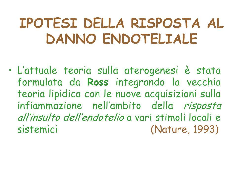 IPOTESI DELLA RISPOSTA AL DANNO ENDOTELIALE L'attuale teoria sulla aterogenesi è stata formulata da Ross integrando la vecchia teoria lipidica con le