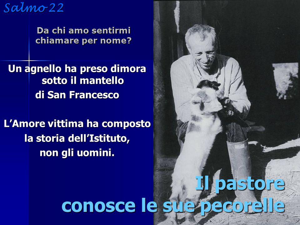 Un agnello ha preso dimora sotto il mantello di San Francesco L'Amore vittima ha composto la storia dell'Istituto, non gli uomini.