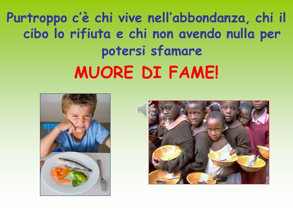 Ogni bambino dovrebbe poter vivere con DIGNITA', avere una famiglia che lo ami, essere curato e avere cibo per potersi nutrire.