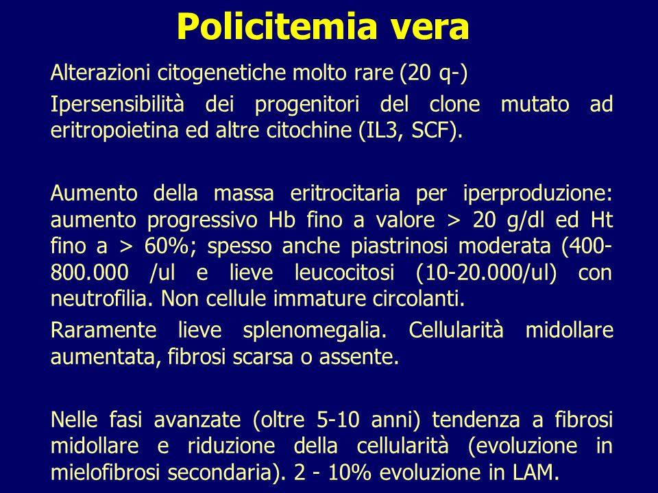 Policitemia vera Alterazioni citogenetiche molto rare (20 q-) Ipersensibilità dei progenitori del clone mutato ad eritropoietina ed altre citochine (I
