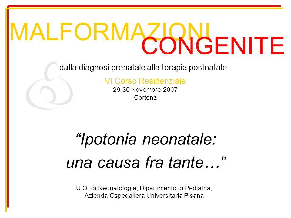 """MALFORMAZIONI """"Ipotonia neonatale: una causa fra tante…"""" CONGENITE dalla diagnosi prenatale alla terapia postnatale VI Corso Residenziale 29-30 Novemb"""