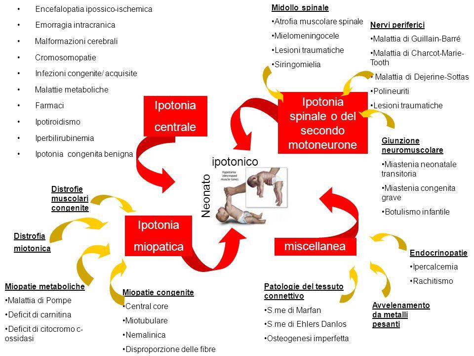 Encefalopatia ipossico-ischemica Emorragia intracranica Malformazioni cerebrali Cromosomopatie Infezioni congenite/ acquisite Malattie metaboliche Far