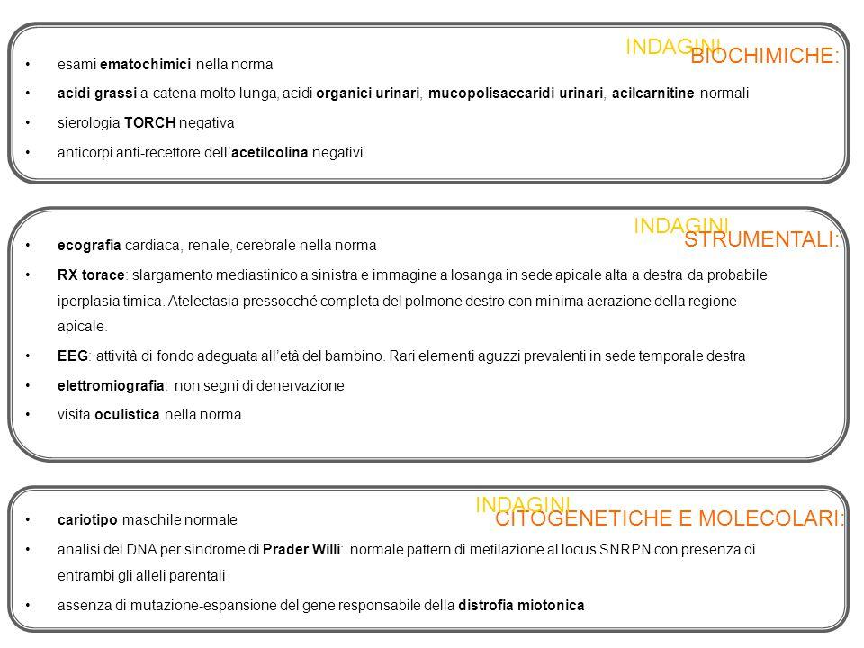 esami ematochimici nella norma acidi grassi a catena molto lunga, acidi organici urinari, mucopolisaccaridi urinari, acilcarnitine normali sierologia