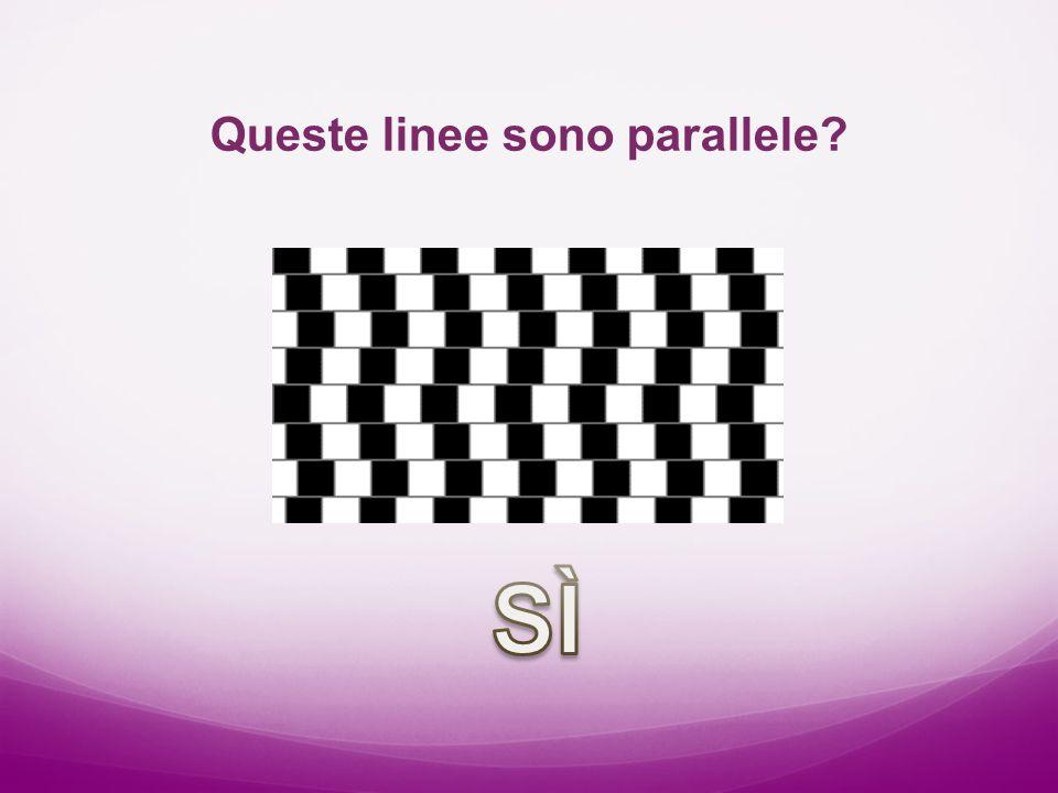 Queste linee sono parallele?