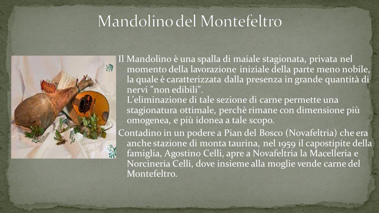 Il Mandolino è una spalla di maiale stagionata, privata nel momento della lavorazione iniziale della parte meno nobile, la quale è caratterizzata dalla presenza in grande quantità di nervi non edibili .