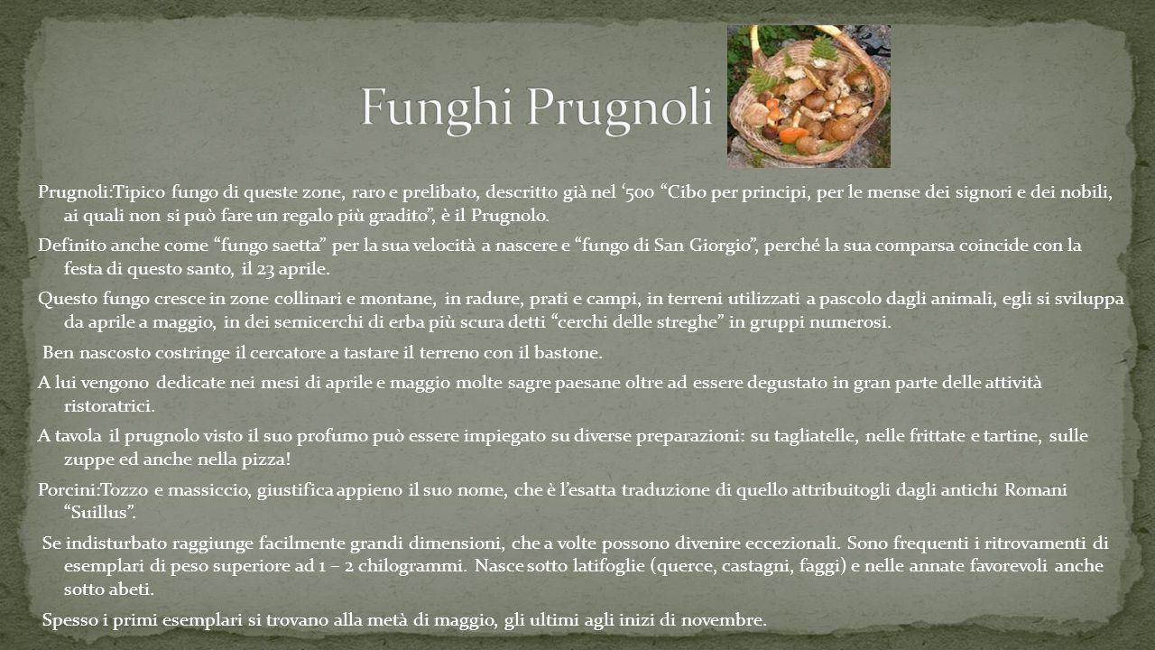 Prugnoli:Tipico fungo di queste zone, raro e prelibato, descritto già nel '500 Cibo per principi, per le mense dei signori e dei nobili, ai quali non si può fare un regalo più gradito , è il Prugnolo.