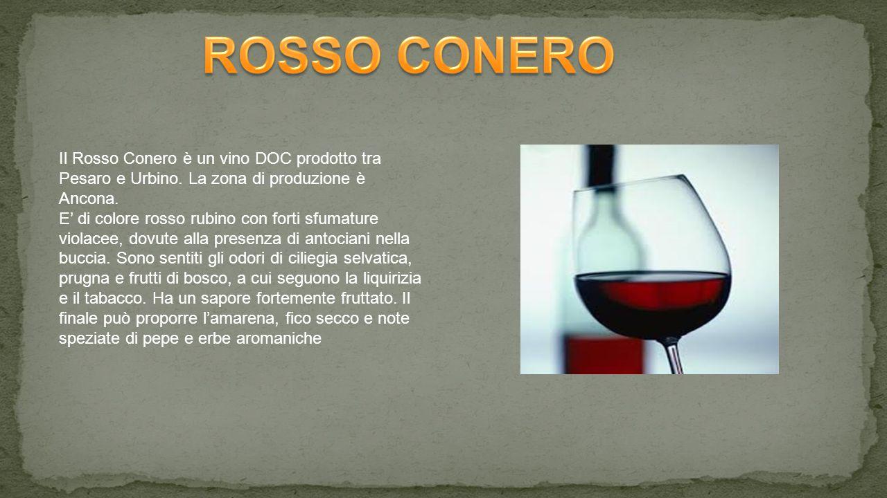 Il Rosso Conero è un vino DOC prodotto tra Pesaro e Urbino.