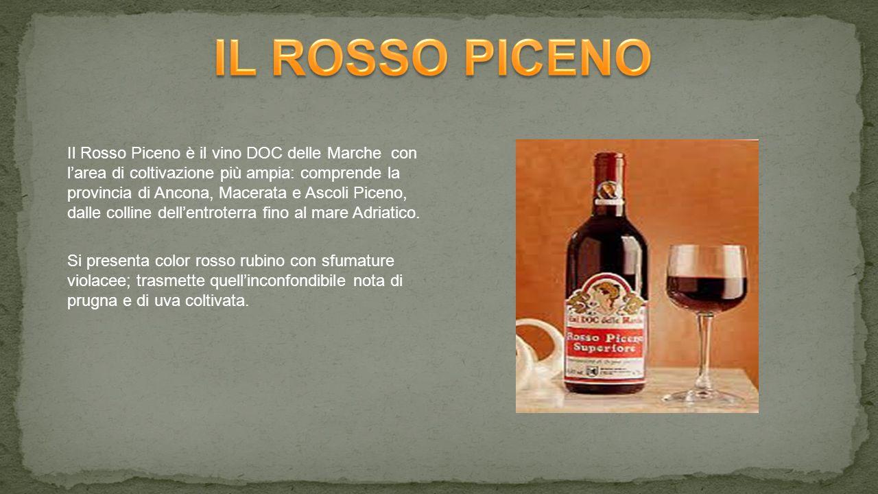 Il Rosso Piceno è il vino DOC delle Marche con l'area di coltivazione più ampia: comprende la provincia di Ancona, Macerata e Ascoli Piceno, dalle colline dell'entroterra fino al mare Adriatico.