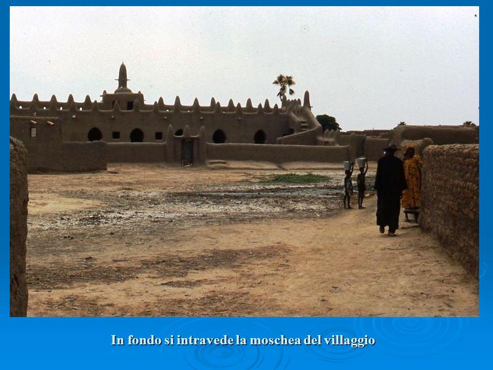 In fondo si intravede la moschea del villaggio