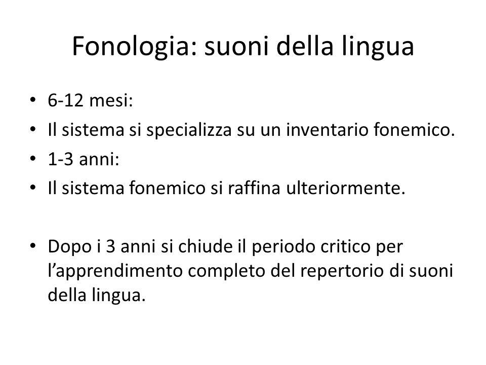 Fonologia: suoni della lingua 6-12 mesi: Il sistema si specializza su un inventario fonemico. 1-3 anni: Il sistema fonemico si raffina ulteriormente.