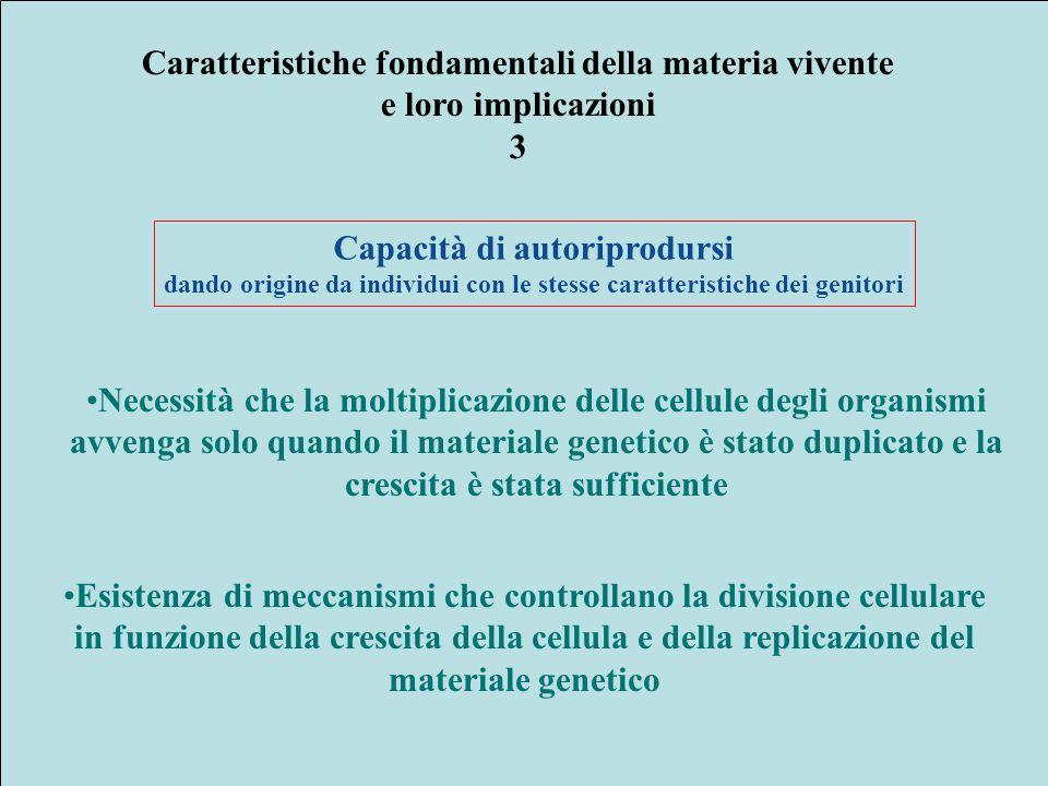 Acidi grassi saturi