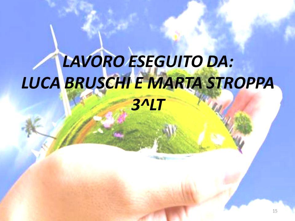 LAVORO ESEGUITO DA: LUCA BRUSCHI E MARTA STROPPA 3^LT 15