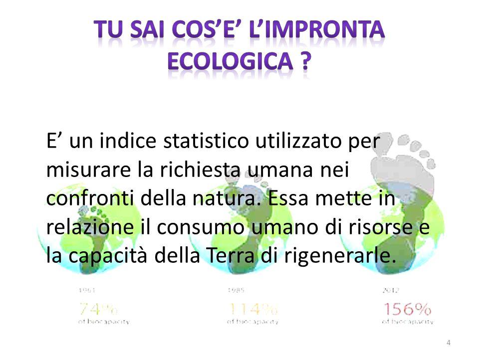 E' un indice statistico utilizzato per misurare la richiesta umana nei confronti della natura. Essa mette in relazione il consumo umano di risorse e l