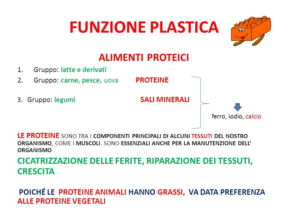 FUNZIONE PLASTICA ALIMENTI PROTEICI 1.Gruppo: latte e derivati 2.Gruppo: carne, pesce, uova PROTEINE 3.