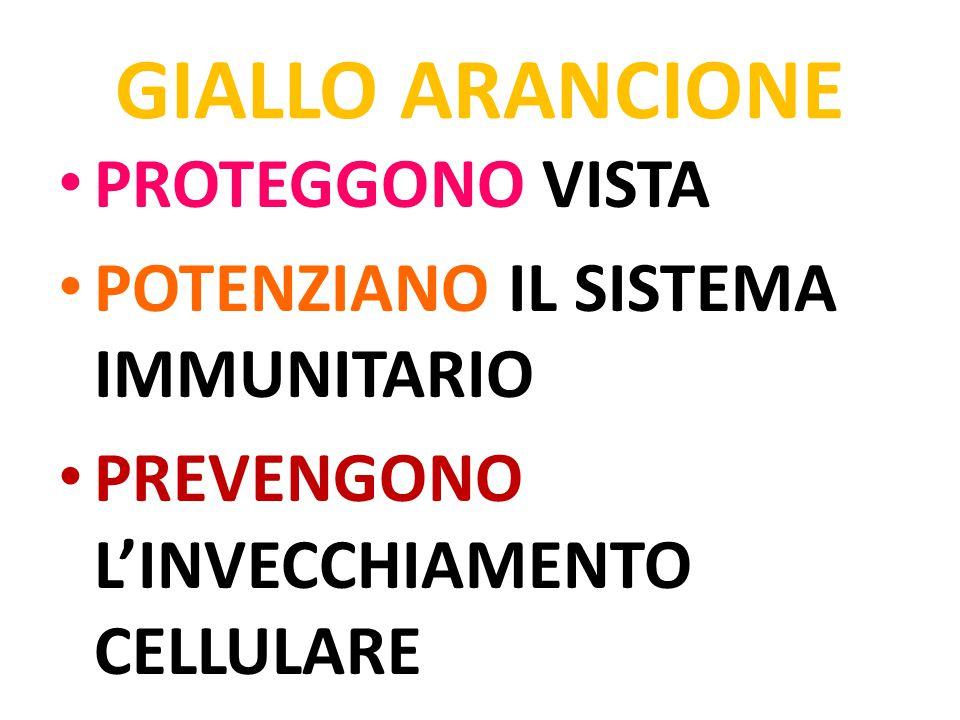 GIALLO ARANCIONE PROTEGGONO VISTA POTENZIANO IL SISTEMA IMMUNITARIO PREVENGONO L'INVECCHIAMENTO CELLULARE