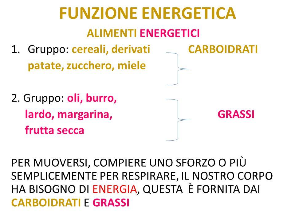 FUNZIONE ENERGETICA ALIMENTI ENERGETICI 1.Gruppo: cereali, derivatiCARBOIDRATI patate, zucchero, miele 2. Gruppo: oli, burro, lardo, margarina,GRASSI