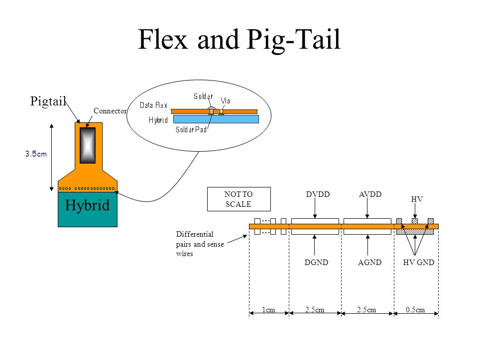 Flex and Pig-Tail Hybrid Connector Pigtail 3.5cm HV HV GNDAGNDDGND DVDDAVDD...