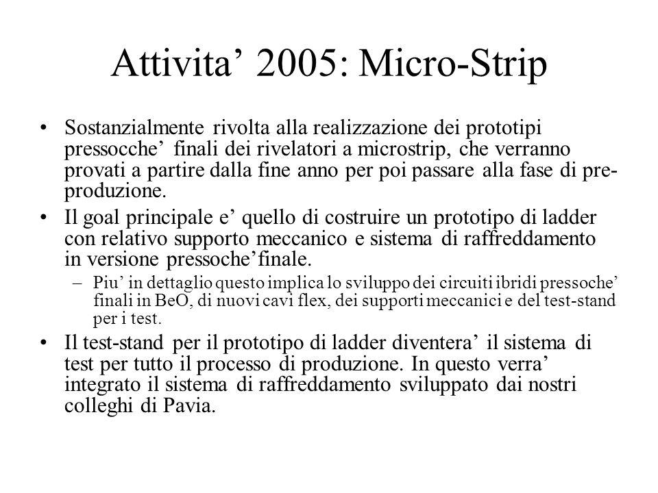 Attivita' 2005: Micro-Strip Sostanzialmente rivolta alla realizzazione dei prototipi pressocche' finali dei rivelatori a microstrip, che verranno prov