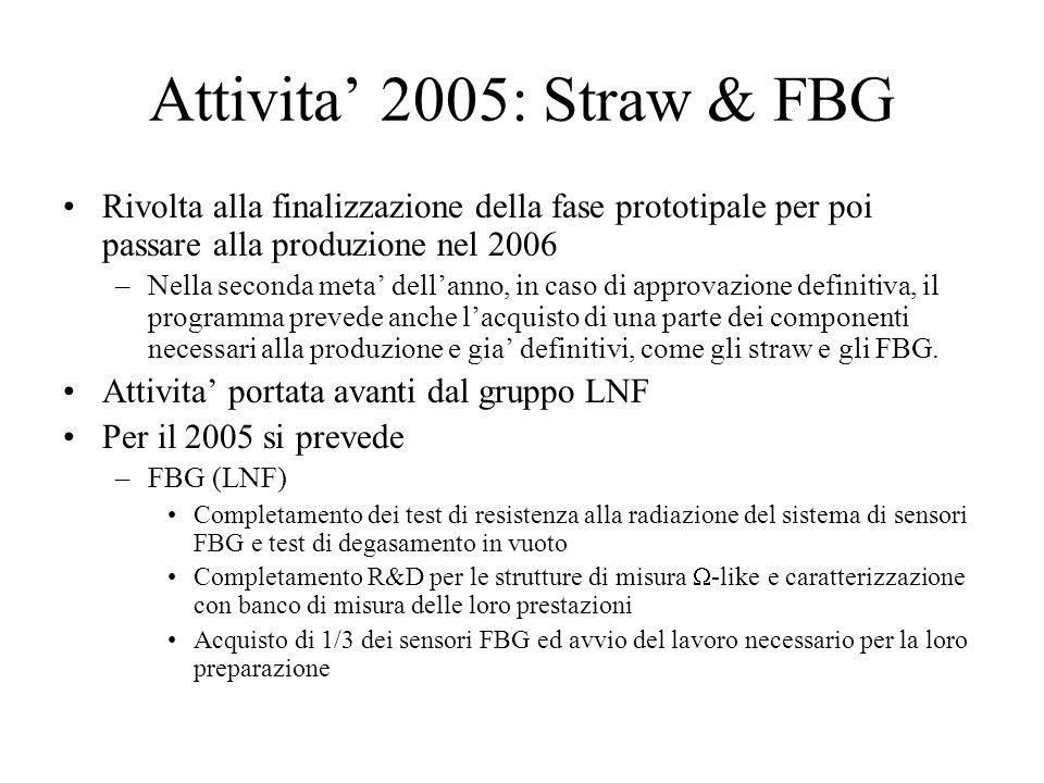Attivita' 2005: Straw & FBG Rivolta alla finalizzazione della fase prototipale per poi passare alla produzione nel 2006 –Nella seconda meta' dell'anno