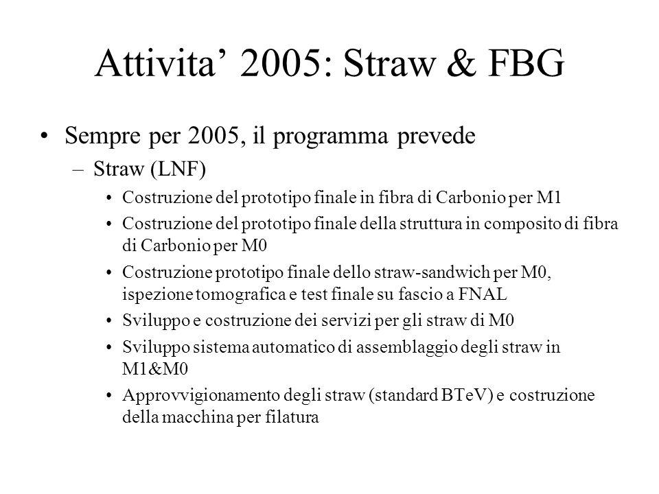 Attivita' 2005: Straw & FBG Sempre per 2005, il programma prevede –Straw (LNF) Costruzione del prototipo finale in fibra di Carbonio per M1 Costruzion