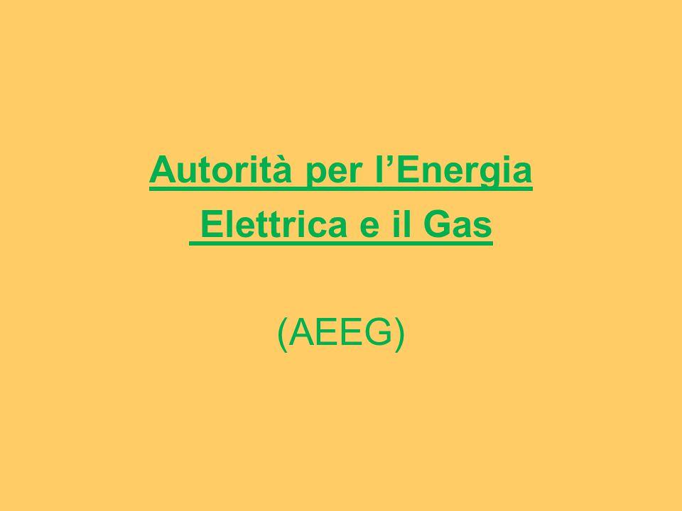 Autorità per l'Energia Elettrica e il Gas (AEEG)