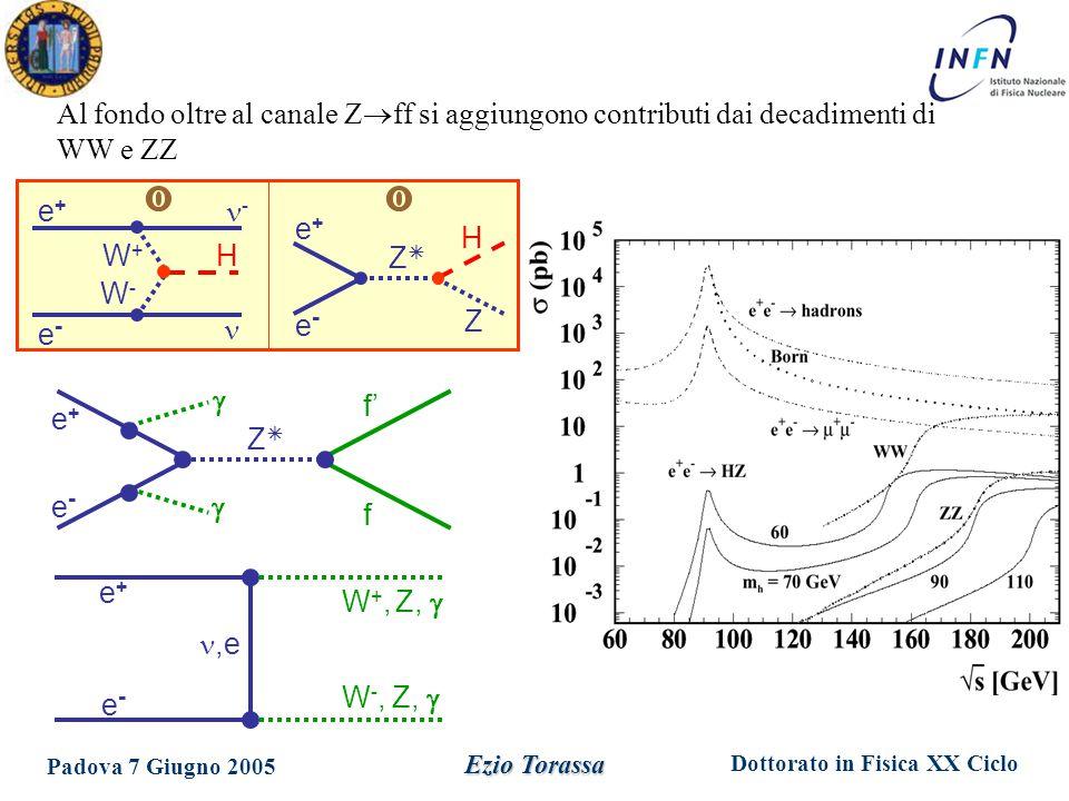 Dottorato in Fisica XX Ciclo Padova 7 Giugno 2005 Ezio Torassa e+e+ f' e-e- f ZZ   W +, Z,  e+e+,e e-e- W -, Z,  e+e+ H e-e- Z ZZ e+e+ - e-e- W+W+ W-W- H  Al fondo oltre al canale Z  ff si aggiungono contributi dai decadimenti di WW e ZZ