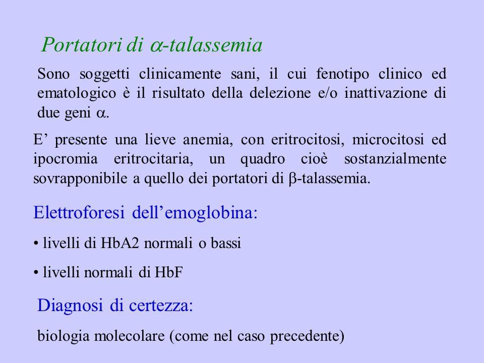 Portatori di  -talassemia E' presente una lieve anemia, con eritrocitosi, microcitosi ed ipocromia eritrocitaria, un quadro cioè sostanzialmente sovr