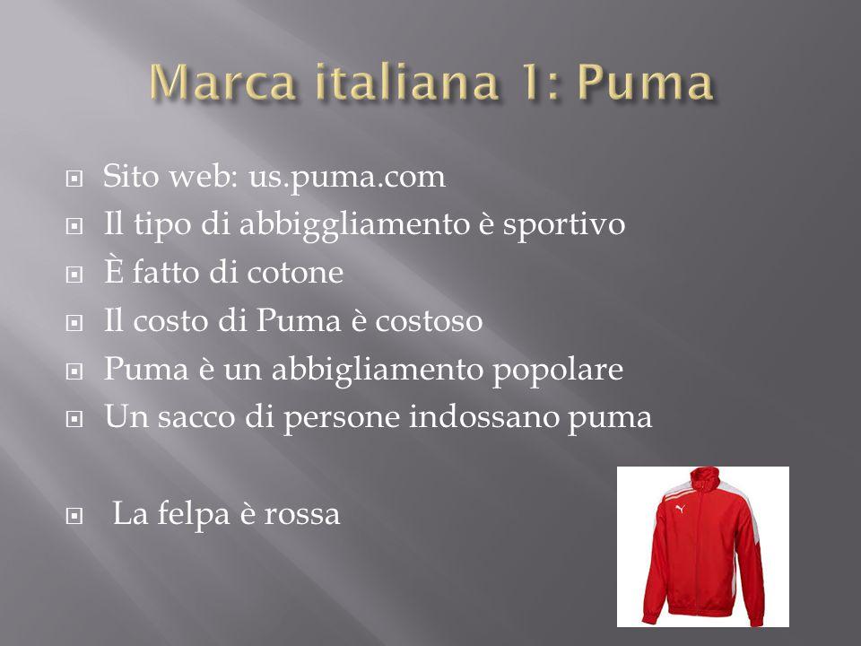  Sito web: us.puma.com  Il tipo di abbiggliamento è sportivo  È fatto di cotone  Il costo di Puma è costoso  Puma è un abbigliamento popolare  Un sacco di persone indossano puma  La felpa è rossa