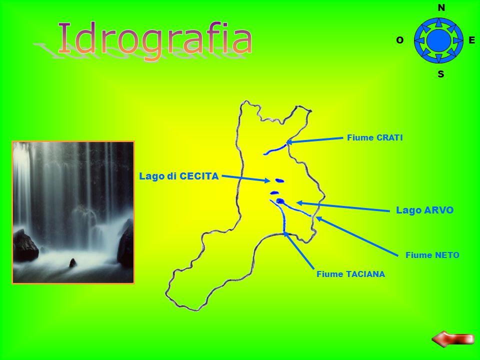 ASPROMONTE SILA N O S E La Calabria ha una forma stretta e allungata; il territorio della regione è quasi completamente montuoso; le pianure, chiamate