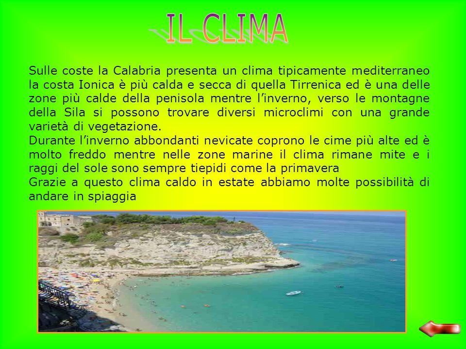 Lupi - Sila Nonostante il disboscamento incontrollato operato per anni la Calabria presenta ancora zone di vegetazione naturale: lungo le coste si svi