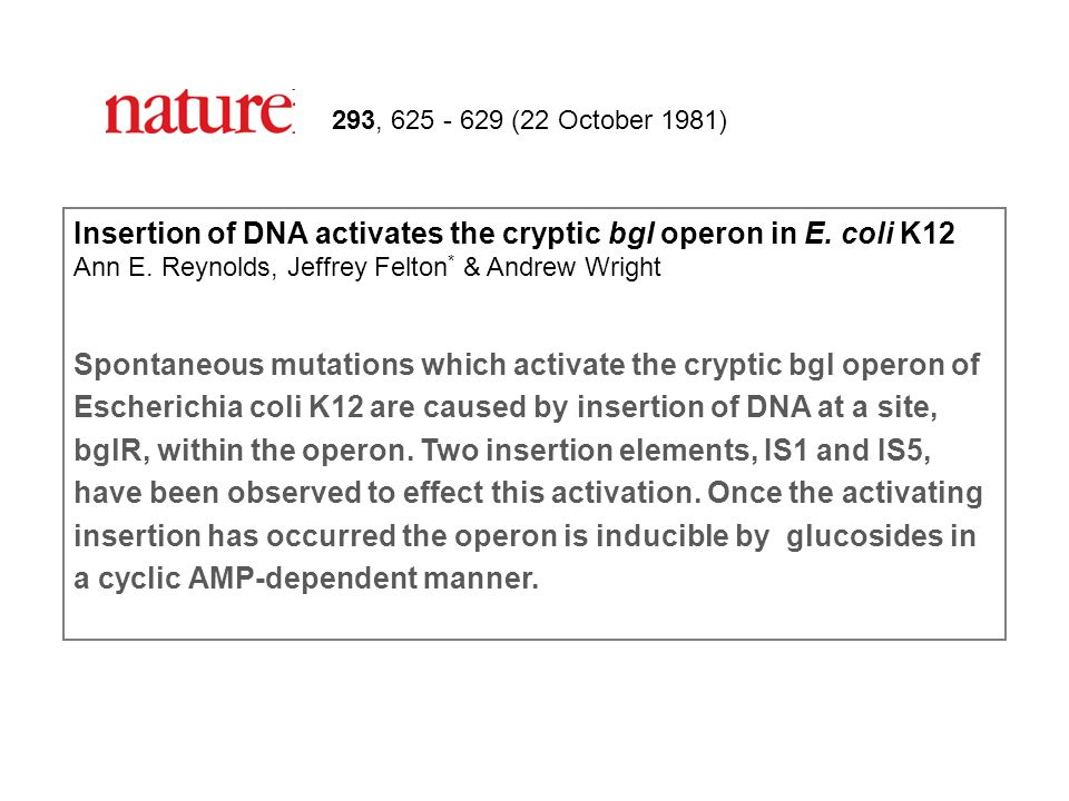 293, 625 - 629 (22 October 1981) Insertion of DNA activates the cryptic bgl operon in E. coli K12 Ann E. Reynolds, Jeffrey Felton * & Andrew Wright Sp