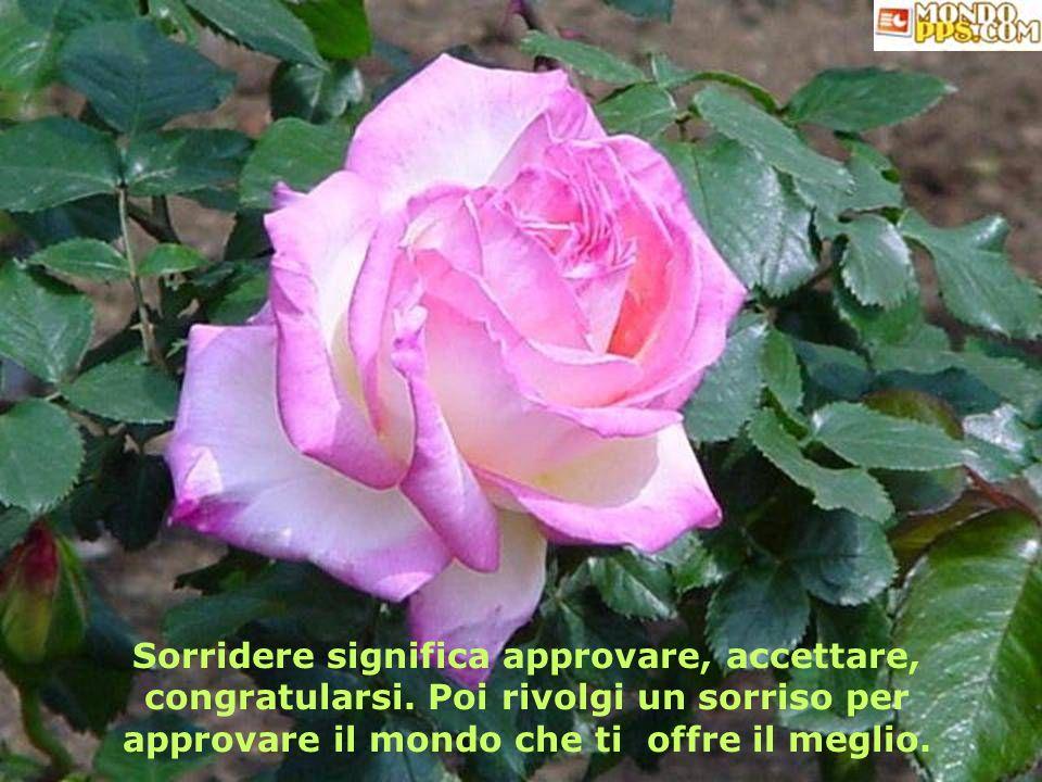 Sorridere significa approvare, accettare, congratularsi.