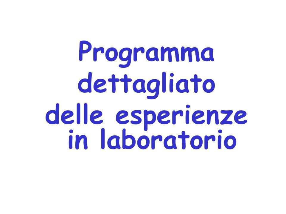 Programma dettagliato delle esperienze in laboratorio