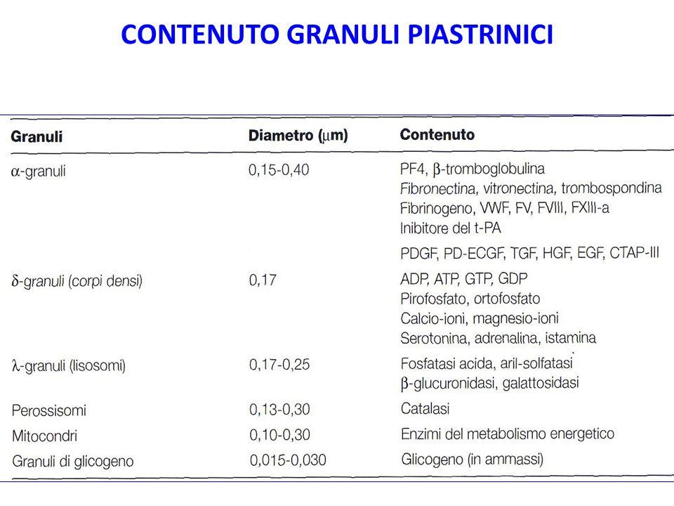 Piastrine : cinetica maturativa Megacarioblasti (Bone marrow 25%) Primo stadio morfologico Megacariociti (Bone marrow 75%) Produzione di trombociti nel citoplasma Piastrine Reticolate (frammenti citoplasmatici dei Megacariociti) Piastrine giovani nel sangue periferico con elevato contenuto in RNA.