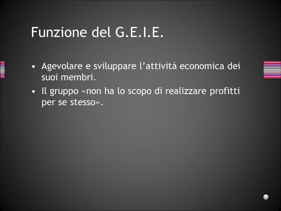 Funzione del G.E.I.E. Agevolare e sviluppare l'attività economica dei suoi membri. Il gruppo «non ha lo scopo di realizzare profitti per se stesso».