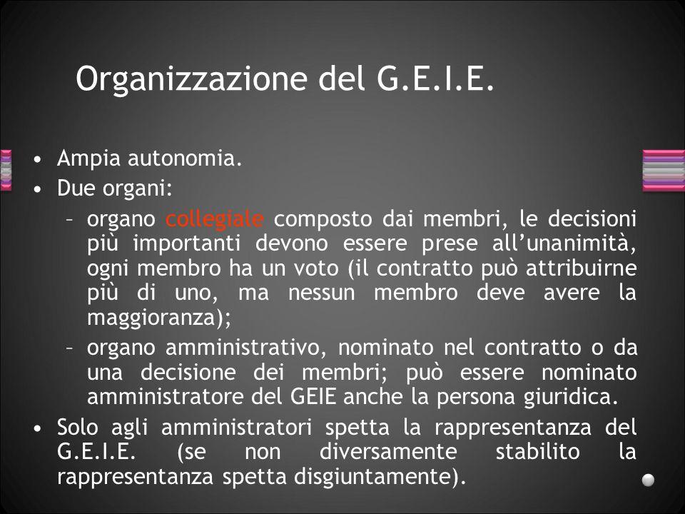 Organizzazione del G.E.I.E. Ampia autonomia. Due organi: –organo collegiale composto dai membri, le decisioni più importanti devono essere prese all'u