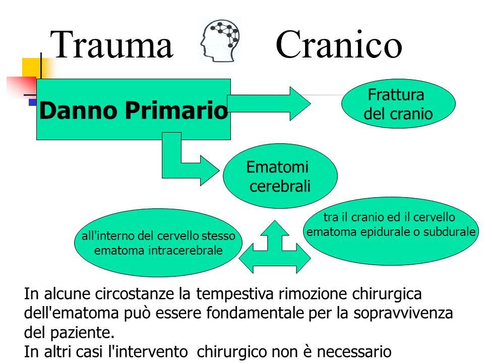 Lesioni conseguenti un trauma cranico TraumaCranico Il danno primario occorre nel istante del trauma Il danno secondario ha luogo nelle ore e nei giorni successivi.