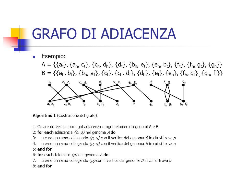 GRAFO DI ADIACENZA Esempio: A = {{a t }, {a h, c t }, {c h, d h }, {d t }, {b h, e t }, {e h, b t }, {f t }, {f h, g t }, {g h }} B = {{a h, b t }, {b h, a t }, {c t }, {c h, d t }, {d h }, {e t }, {e h }, {f h, g t }, {g h, f t }} Algoritmo 1 (Costruzione del grafo) 1: Creare un vertice por ogni adiacenza e ogni telomero in genomi A e B 2: for each adiacenzia {p, q} nel genoma A do 3:creare un ramo collegando {p, q} con il vertice del genoma B in ciu si trova p 4:creare un ramo collegando {p, q} con il vertice del genoma B in cui si trova q 5: end for 6: for each telomero {p} del genoma A do 7:creare un ramo collegando {p} con il vertice del genoma B in cui si trova p 8: end for
