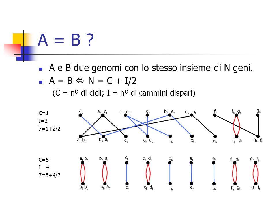 A = B . A e B due genomi con lo stesso insieme di N geni.