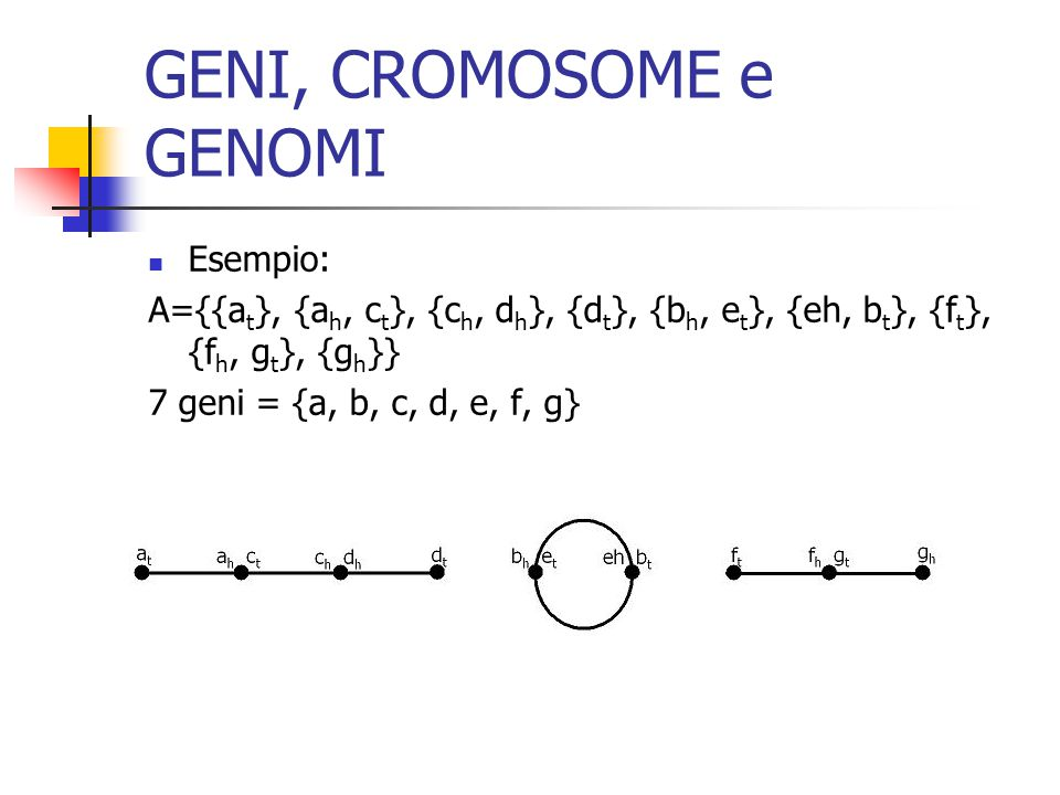 GENI, CROMOSOME e GENOMI Esempio: A={{a t }, {a h, c t }, {c h, d h }, {d t }, {b h, e t }, {eh, b t }, {f t }, {f h, g t }, {g h }} 7 geni = {a, b, c, d, e, f, g}