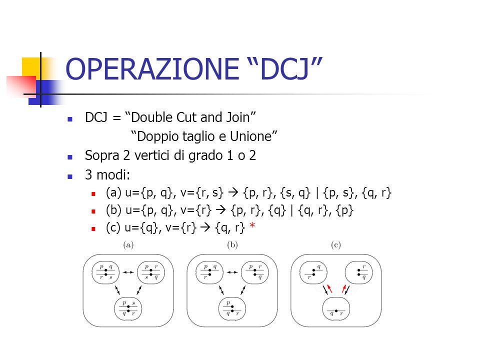 OPERAZIONE DCJ DCJ = Double Cut and Join Doppio taglio e Unione Sopra 2 vertici di grado 1 o 2 3 modi: (a) u={p, q}, v={r, s}  {p, r}, {s, q} | {p, s}, {q, r} (b) u={p, q}, v={r}  {p, r}, {q} | {q, r}, {p} (c) u={q}, v={r}  {q, r} *