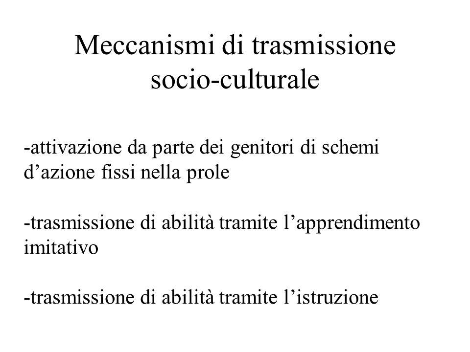 Meccanismi di trasmissione socio-culturale -attivazione da parte dei genitori di schemi d'azione fissi nella prole -trasmissione di abilità tramite l'