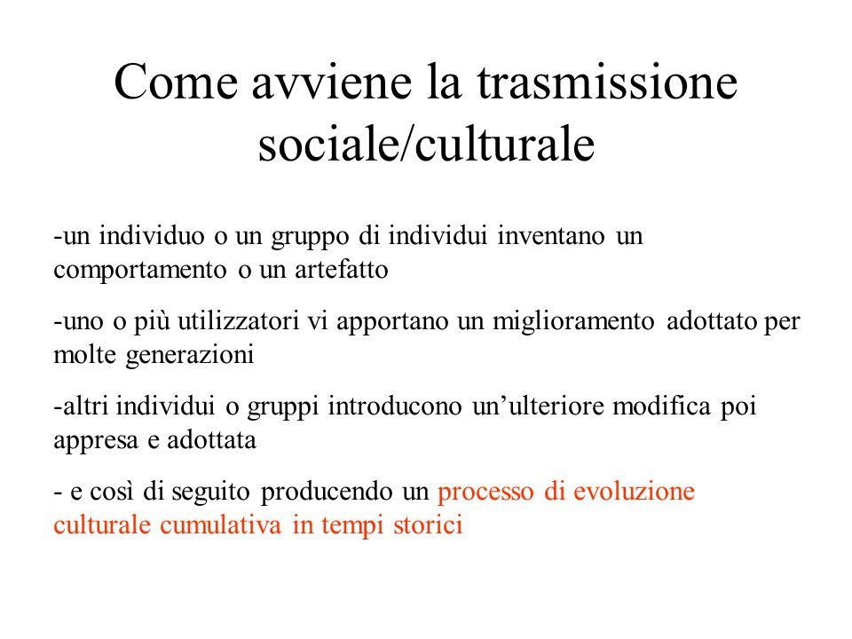 Come avviene la trasmissione sociale/culturale -un individuo o un gruppo di individui inventano un comportamento o un artefatto -uno o più utilizzator
