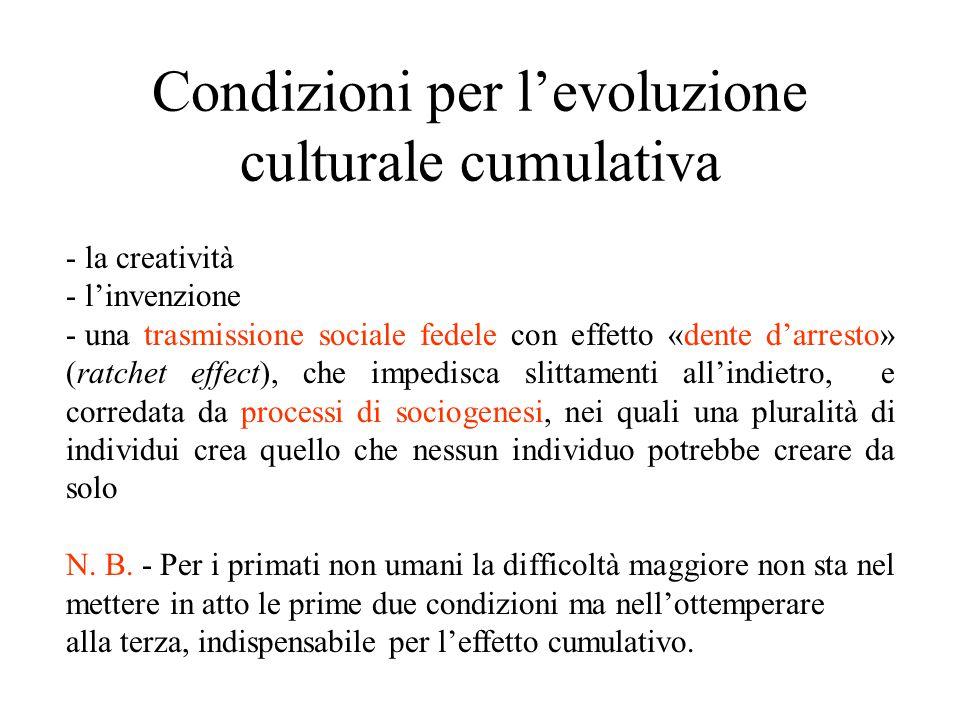 Condizioni per l'evoluzione culturale cumulativa - la creatività - l'invenzione - una trasmissione sociale fedele con effetto «dente d'arresto» (ratchet effect), che impedisca slittamenti all'indietro, e corredata da processi di sociogenesi, nei quali una pluralità di individui crea quello che nessun individuo potrebbe creare da solo N.